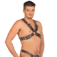 ledapol 5516 sm leather chest harness - gay harness